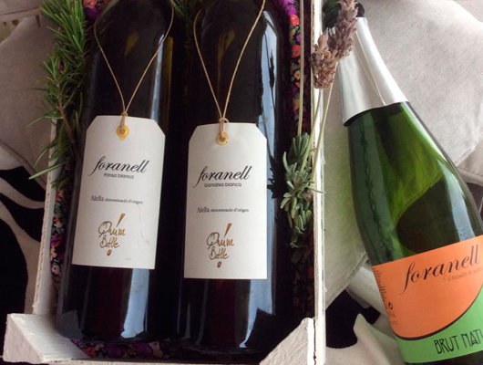 Un vi del Celler Joaquim Batlle
