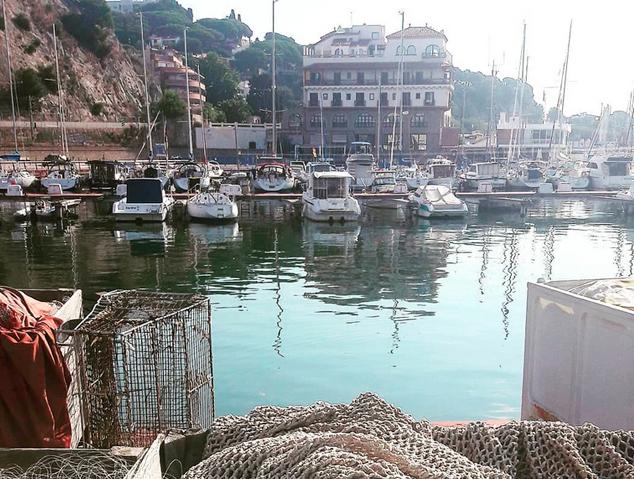El Port d'Arenys de Mar