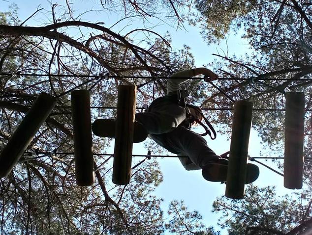 El Bosc Vertical de Mataró