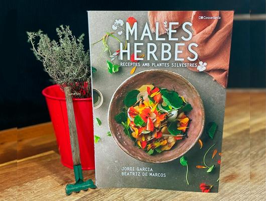 Males herbes: Receptes amb plantes silvestres