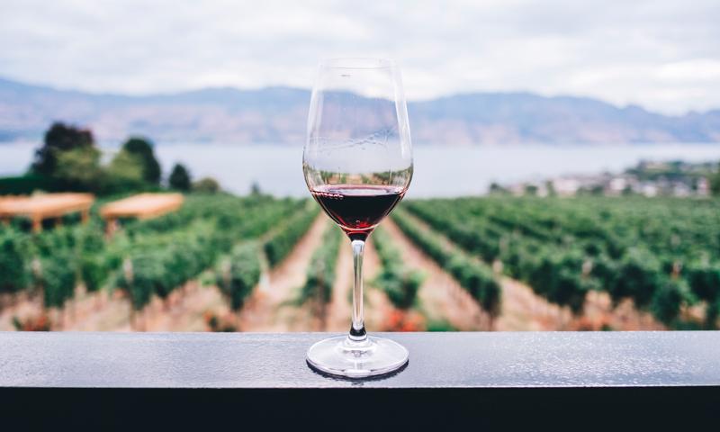 Els 10 millors vins (que hem tastat) aquest 2020