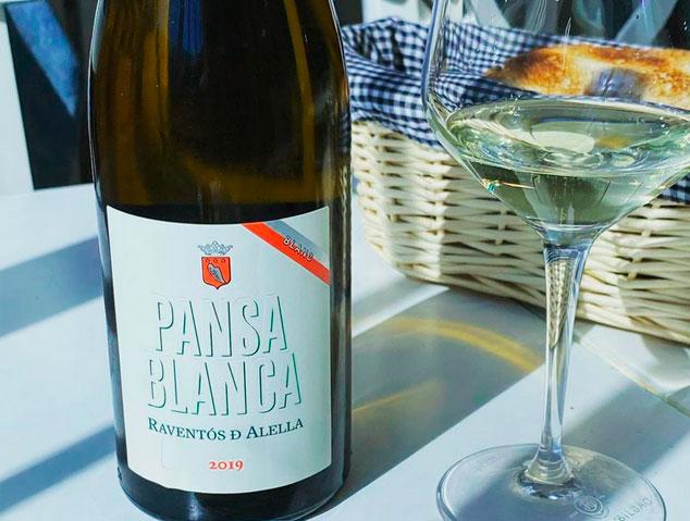 Pansa Blanca, un dels millors vins blancs catalans