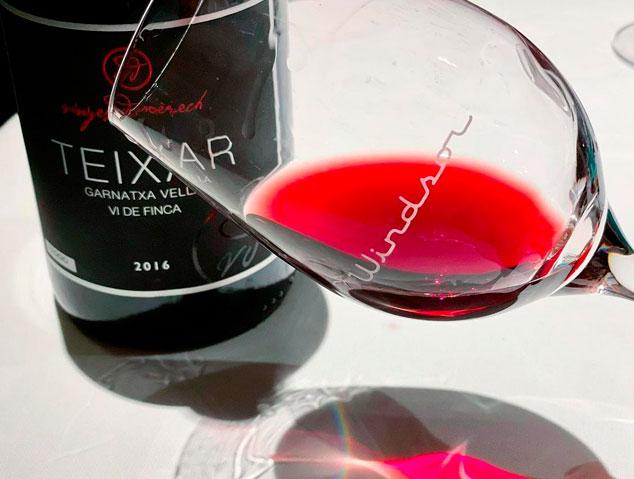 Teixar de Vinyes Domenech, un dels millors vins negres de Catalunya